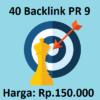 Jasa Backlink Manual 40 PR 9